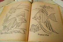 他の写真1: ☆SAALFIELD ビンテージ 塗り絵☆Nature Book to Color